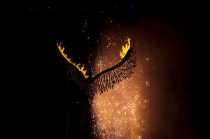 800px-The_phoenix_rises